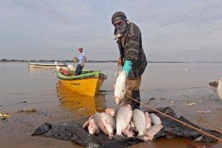 Por la bajante, un juez prohibió la pesca en toda la provincia de Santa Fe