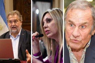 Así votaron los senadores santafesinos al proyecto de legalización del aborto