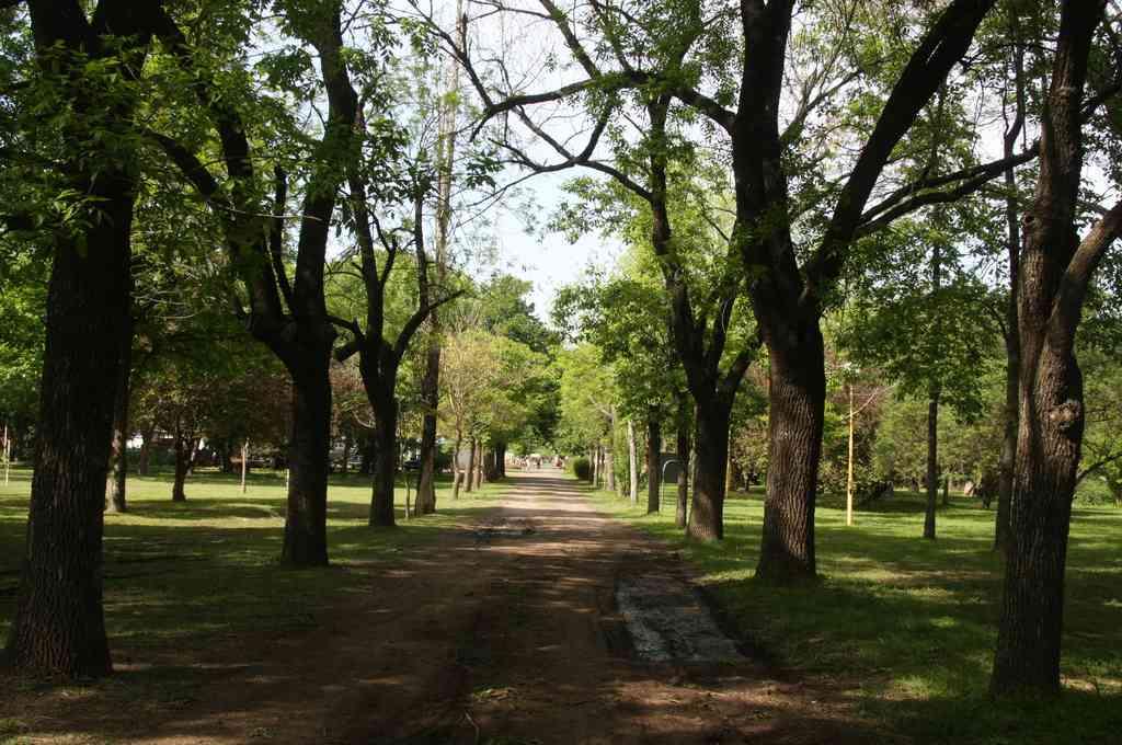 El Jardín Botánico se encuentra en Av. Gorriti al 3900. Crédito: Gentileza