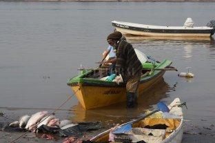Proponen que se habilite la pesca comercial tres días a la semana