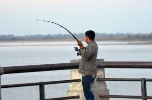 Un fiscal pide que se levante la veda pesquera en Santa Fe