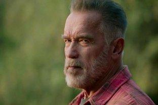 """""""El Día del Juicio"""": la opinión de Arnold Schwarzenegger sobre el asalto al Capitolio"""