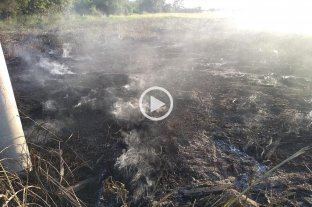 Video: incendio y alarma en Santo Tomé