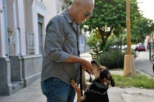 """La historia del adiestrador y """"Jim"""", el perro  que se crió atado a un árbol con alambres"""