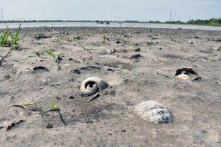La estación meteorológica de Sauce Viejo  registra déficit hídrico en el suelo hace un año