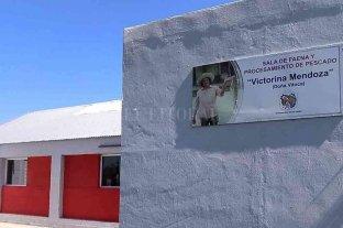 """Se concesionó la sala de faena de pescados """"Victorina Mendoza"""""""