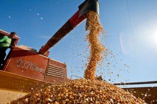 La soja cayó US$ 3 en Rosario y cerró a US$ 327 la tonelada