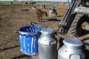 Tamberos argentinos son los que cobran menos en el mundo