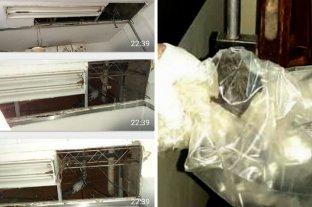 Sin cielo raso y con murciélagos, el reclamo de Mamás Sustitutas del Hospital de Niños - Los daños en el cielo raso y el murciélago capturado dentro del hospital. -