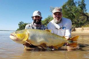 Pescan enorme dorado en el Río Paraná