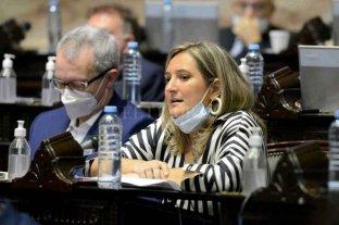 "Lucila Lehmann: ""A este gobierno le cuesta entender que no todo da lo mismo"""