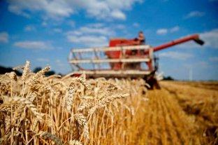 Bolsas de Cereales y de Comercio solicitan medidas ante los cortes de ruta que afectan el abastecimiento