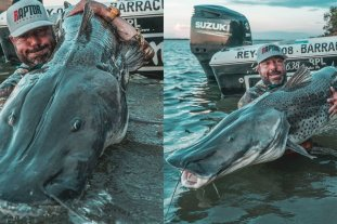 Pescaron en Corrientes un impresionante surubí de 1,77 metros