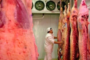 """""""Cortes populares"""": frigoríficos consumeros se suman al plan del gobierno, pero ponen reparos"""