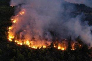 """Incendio en El Bolsón: la lluvia trajo alivio pero """"la pérdida ambiental es la más grande de la historia"""""""