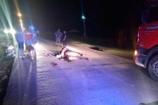 Entre Recreo y Monte Vera: camión embistió a un hombre a caballo y murió el animal  -