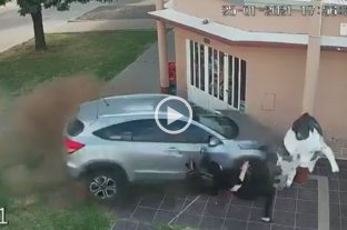 Perdió el control de su auto y chocó contra una carnicería: una mujer se salvó de milagro