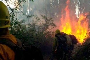 Importante incendio en Río Negro consumió unas 6500 hectáreas