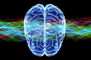 Androginia cerebral: qué es y qué beneficios podría tener
