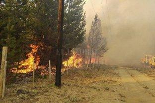 """Advierten que es """"muy grave"""" el daño por los incendios en El Bolsón"""