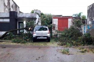 Aseguran que un tornado de baja intensidad pasó por Venado Tuerto
