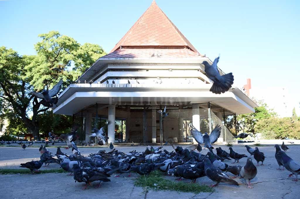 Emblema. El paseo ubicado en la plaza Colón es restaurado para el cuidado de las palomas. Crédito: Manuel Alberto Fabatía
