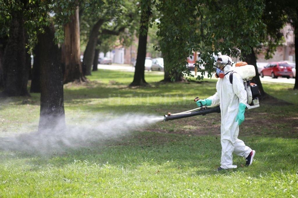 Operarios municipales en plena tarea de fumigación.  Crédito: Pablo Aguirre