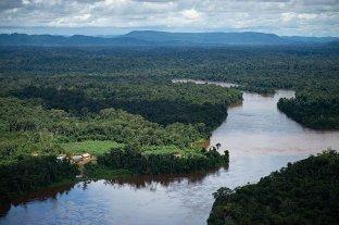 Por primera vez, el Amazonas genera más dióxido de carbono del que absorbe