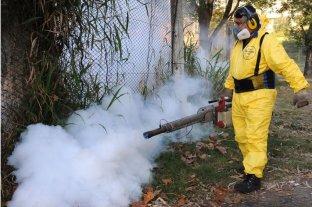 Refuerzan las fumigaciones en Rosario luego del aumento de mosquitos