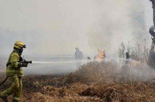 Focos activos de incendios en Entre Ríos, Chubut, Buenos Aires y Misiones