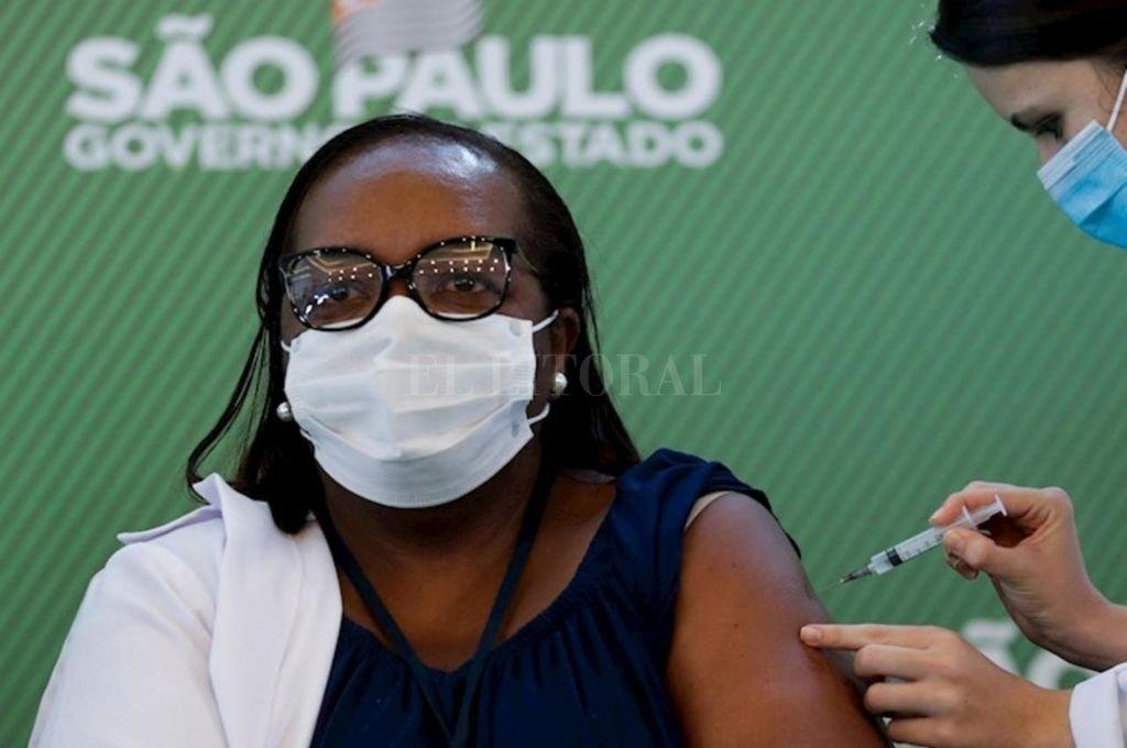 La campaña de inmunización corre riesgo en Brasil. Nueve capitales estaduales sufren escasez de inoculantes.    Crédito: Gentileza