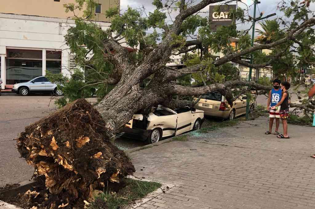 Fuerte tormenta de viento en Gualeguaychú destrozó automóviles. Crédito: Gentileza