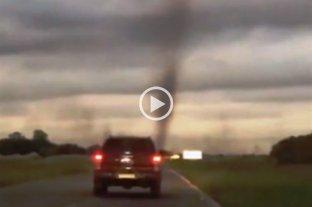 """Video: registraron un """"tornado de mosquitos"""" en Pinamar"""