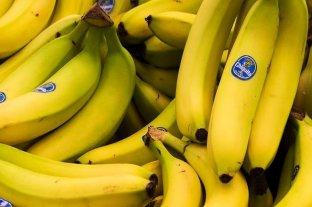 """""""La pandemia del banano"""" avanza y América Latina se suma a la alerta mundial -"""