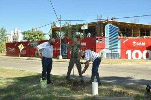 CAM construye su edificio N° 100 y plantará 100 árboles en la ciudad
