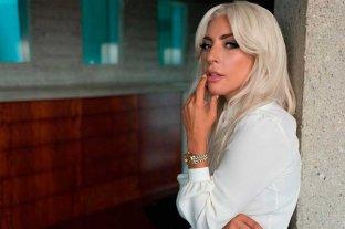 Lady Gaga ofrece 500 mil dólares para recuperar a sus perros robados