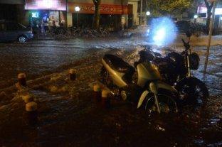 Calles anegadas, árboles caídos y filtraciones en casas por la tormenta en Mendoza