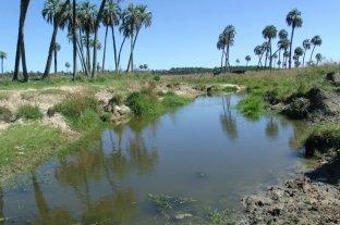 Financiarán proyectos que beneficien el ambiente y comunidades locales de Entre Ríos