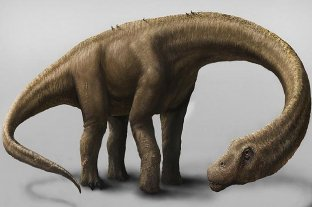 Confirmaron que el titanosaurio más antiguo del mundo es argentino