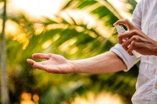 La UNLA desarrolló un insecticida para mosquitos, moscas y vinchucas que no daña el medio ambiente