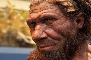 El neandertal hablaba igual que el homo sapiens