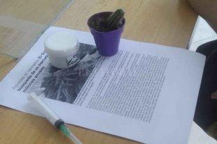 Insólito: concejal le regaló cannabis, una jeringa y un cactus al intendente