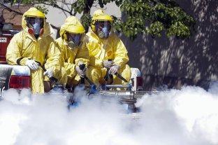 La Rioja reporta 49 casos de dengue