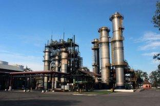 El gobierno de Córdoba y 41 instituciones piden por la prórroga de la ley de biocombustibles
