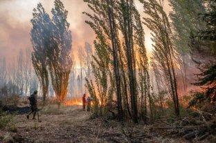Incendios en Chubut: hay al menos 15 personas desaparecidas