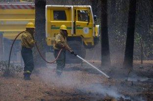 El Gobierno enviará peritos especializados para investigar los incendios