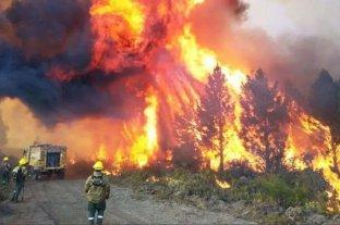 Hay una recompensa de $ 3 millones  para encontrar a los responsables de los incendios