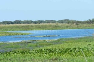 La costa santafesina tiene su primera reserva ecológica
