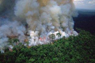 El Amazonas podría estar empeorando el cambio climático