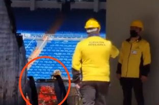 """Viral: ¿se """"colaron"""" dos pingüinos de Madagascar en las obras del estadio Santiago Bernabeu?"""